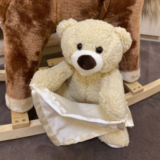 Interactive teddy bear