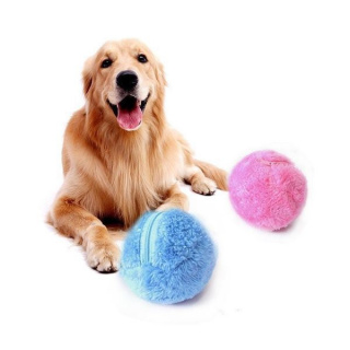 Moving ball for pets