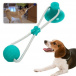 Toy for dogs for teeth cleaning